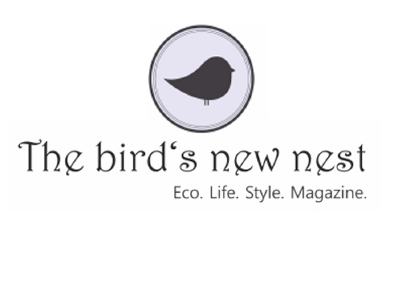 The-Birds-New-Nest-ver-sitio